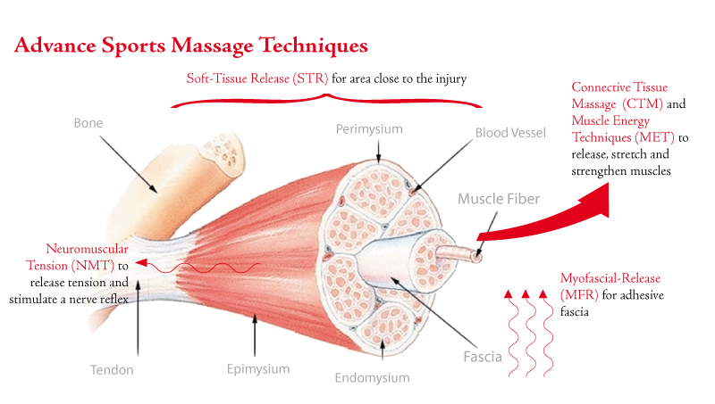 Deep Tissue Massage Diagram